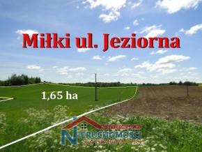 Miłki, ul. Jeziorna